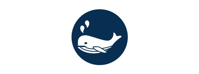 Survey Fauna Marina